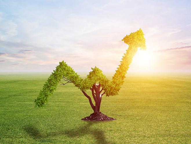 Investimenti green in Francia